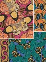 Decorative Butterflies III Framed Print