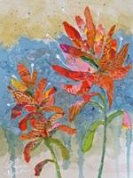 Indian Paintbrush Collage II Fine Art Print