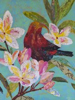 Hawaiian Bird II Fine Art Print