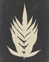 Linen Fern II Fine Art Print