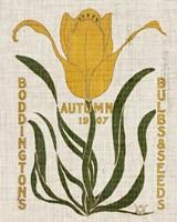 Flower Seed Packs I Framed Print