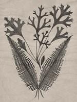 Eloquent Leaves IV Framed Print
