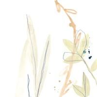 Botany Gesture I Framed Print