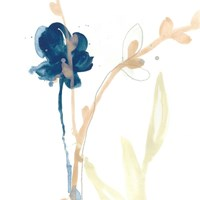 Botany Gesture V Framed Print