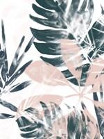 Tropical Blush II Fine Art Print