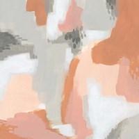 Aymara IV Framed Print