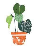 Happy Plants II Framed Print