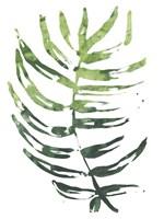 Emerald Tropics IV Framed Print