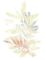 Pastel Tropics II Framed Print