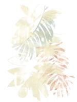 Pastel Tropics III Framed Print