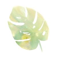 Prisma Tropical I Framed Print