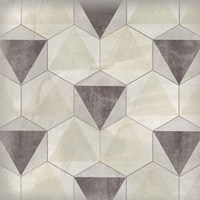 Hexagon Tile II Fine Art Print