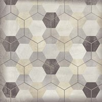 Hexagon Tile VIII Fine Art Print