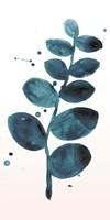 Stems in Indigo I Framed Print