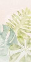 Tropical Sorbet I Framed Print