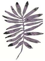Foliage Fossil I Framed Print
