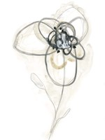 Monochrome Floral Study IV Fine Art Print