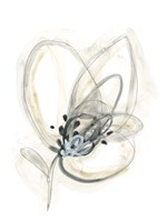 Monochrome Floral Study V Fine Art Print