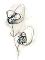 Monochrome Floral Study IX Framed Print