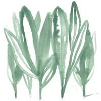 Boho Tropicals IV Framed Print