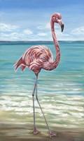 Beach Walker Flamingo I Fine Art Print