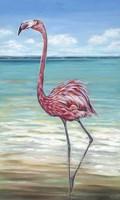 Beach Walker Flamingo II Fine Art Print