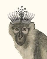 Majestic Monkey I Framed Print