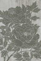Blooming Peony I Framed Print