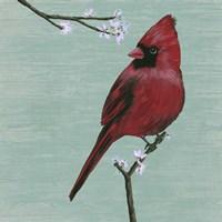 Bird & Blossoms II Framed Print