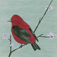 Bird & Blossoms III Framed Print