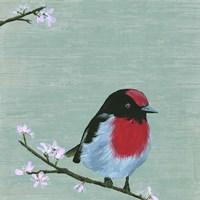 Bird & Blossoms IV Framed Print