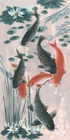Traditional Koi Pond II Fine Art Print