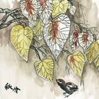 Autumnal I Framed Print
