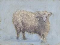 Sheep Strut I Fine Art Print