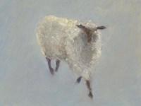 Sheep Strut II Fine Art Print