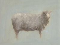 Sheep Strut III Fine Art Print