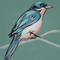 Winged Sketch IV on Teal Framed Print