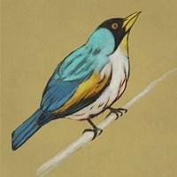 Winged Sketch II on Ochre Framed Print
