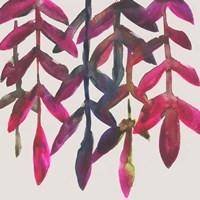 Fuchsia Vine I Fine Art Print