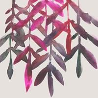 Fuchsia Vine II Fine Art Print
