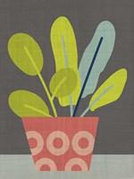 Clay Pot III Framed Print