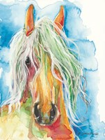 Water Horse Fine Art Print