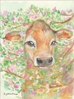 Baby Blossom Fine Art Print
