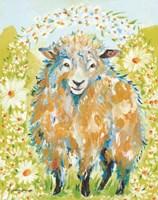 Daisy Fields Fine Art Print