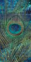 Metropolitan Peacock 1 Fine Art Print