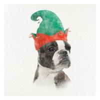 Christmas Rover 3 Fine Art Print