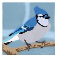 Majestic Blue Jay Fine Art Print