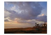 Marsh View Fine Art Print