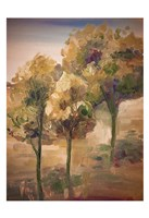 Golden Pageant Trees Fine Art Print
