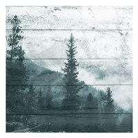 Fog On The Forest Fine Art Print